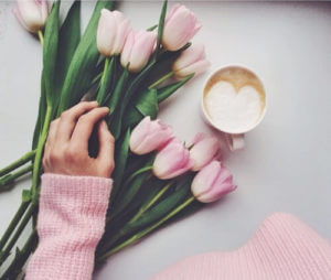 tulipan_mujer_rosa